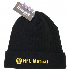 Thinsulate Beanie Cap